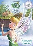 A Magical Discovery (Disney Fairies) (Color Plus Card Stock)