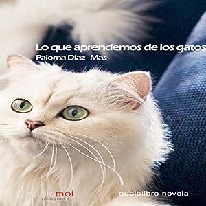 Lo que aprendemos de los gatos [What We Learn from Cats] Audiobook