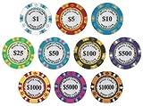 モンテカルロ 13.5g ポーカーチップ 10枚セット