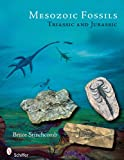 img - for Mesozoic Fossils: Triassic and Jurassic book / textbook / text book