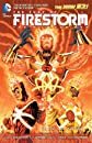The Fury of Firestorm: The Nuclear Man Vol. 1: God Particle (The New 52)