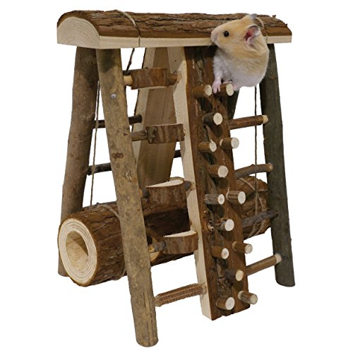 Activity Assault Course – Hamster & Small Animal Toy 51yjQgepCrL hamster cages Hamster Cages | Toys | Balls | Treats | Bedding 51yjQgepCrL