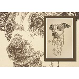 Italian Greyhound Lithograph by Stephen Kline