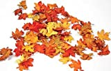 Mini Fall Maple Leaves - Autumn Weddings, Invitation Leaves, Fall Table Accemt