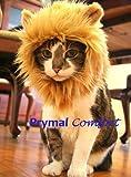 Prymal Lion Mane Cat Costume. Turn Your Cat Into a Ferocious Lion!