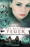 Das heilige Feuer: Die Schwestern der Dunkelheit (German Edition)
