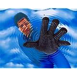 Seal Skinz Waterproof Gloves in Black