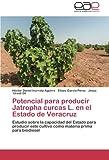 Potencial para producir Jatropha curcas L. en el Estado de Veracruz: Estudio sobre la capacidad del Estado para producir este cultivo como materia prima para biodiesel (Spanish Edition)