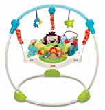 Fisher Price Precious Planet  Blue Sky Jumperoo