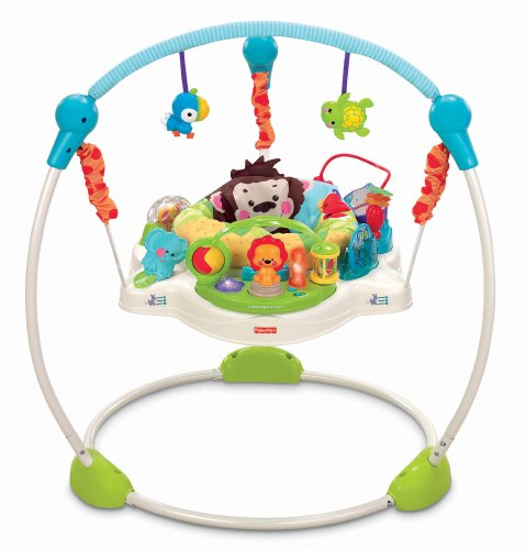 Deal Fisher Price Precious Planet  Blue Sky Jumperoo Reviews