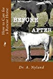 How to Care for a Rescue Horse