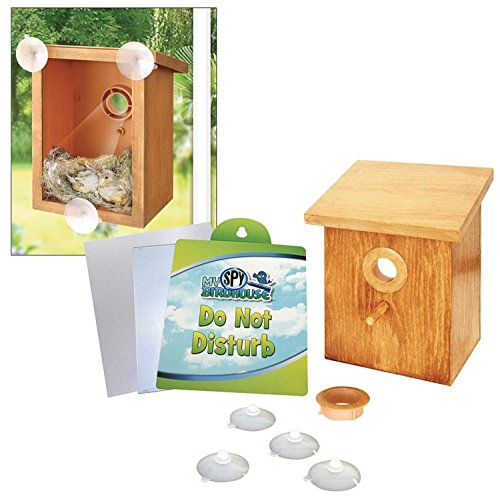 See Through Outdoor Wall Cling My Spy Birdhouse Bird House Birdhouses Spring