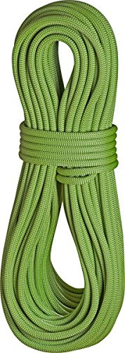 EDELRID-Kletterseil-Heron-Pro-Dry-98-mm-FarbeleafGre60-m