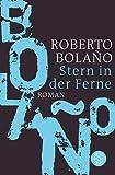 Stern in der Ferne: Roman (Literatur)