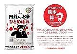 【精米】くまもとの赤ブランド 阿蘇ひとめぼれ5kg