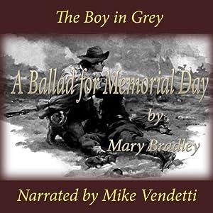 The Boy in Grey Audiobook