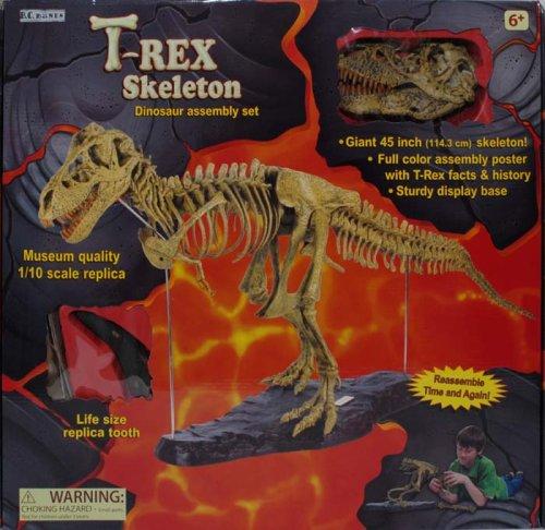 T-Rex Skeleton 45