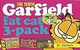 echange, troc Jim / DAVIS, JIM Davis - fifth garfield fat cat pack