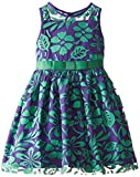 Us Angels Little Girls' Iridescent Lace Dress with Illusion Bodice