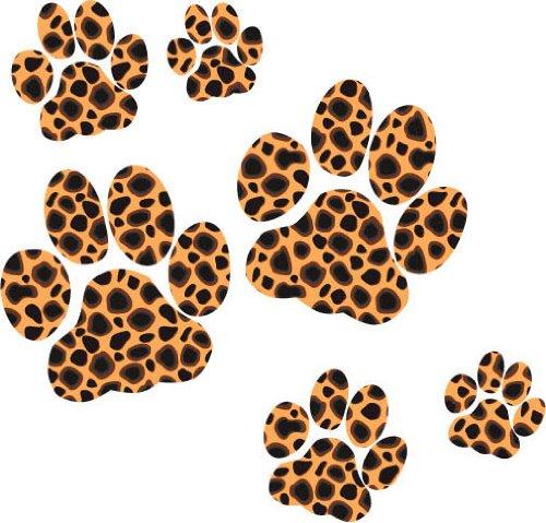 Jaguar animal paw - photo#14