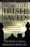 img - for How the Irish Saved Civilization (Hinges of History) book / textbook / text book