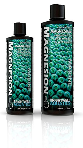 Bwell Magnesion Liquid 17Oz