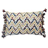 Blissliving Home Luminoso Pillow