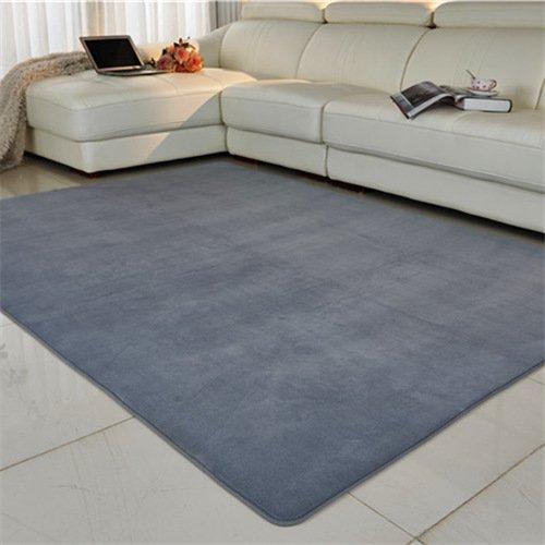 home-puo-essere-lavata-in-lavatrice-tappeto-di-corallo-shop-pieno-tabelle-divano-letto-camera-da-let