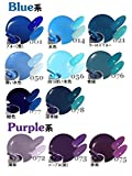 Amazon.co.jpジェルネイル ソークオフ カラージェル [ブルー・パープル系] 10g 【UV・LED対応】 カラー 77