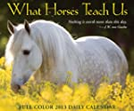 What Horses Teach Us Daily Box Calend...