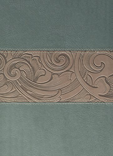 hcsb-study-bible-teal-taupe-leathertouch-indexed