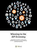 Winning in the API Economy (English Edition)