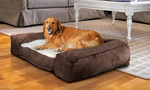 Animal-Planet-Orthopedic-Memory-Foam-Bed-40-x-27-x-8-Lounger-For-Comfort-Support