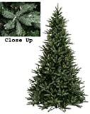 9' Pre-Lit Natural Frasier Fir Artificial Christmas Tree - Clear Lights