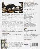 Image de L'orso [Blu-ray] [Import italien]