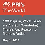 100 Days in, World Leaders Are Still Wondering if There's Any Reason to Trump's Antics | Joyce Hackel