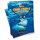 Shark Tooth Necklace(strings color may vary)