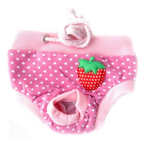 New Cloth Diapers front-1029635