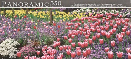 Panoramic 350 Piece Puzzle ~ Tulip Delight, Butchart Gardens, Brithis Columbia, Canada by LPF Limited