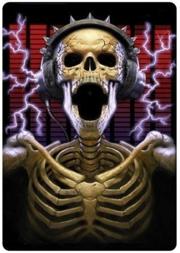 Skull DJ fridge magnet 3 1/2
