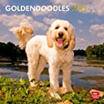Goldendoodles 2013 Square 12X12 Wall...