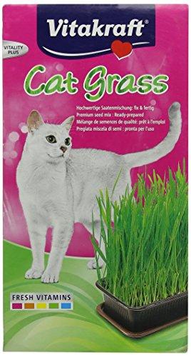 vitakraft-24031-herbe-a-chat-cat-gras