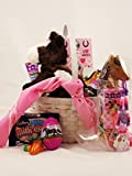 Beautiful Horse Themed Easter Candy and Toy Easter Basket with Aurora Plush