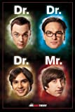 The Big Bang Theory - Dr. / Mr. Poster - 91.5x61cm