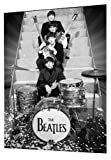 GB Eye 3D Lenticular Poster, The Beatles, On Stage, 47x67cm
