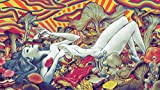 """Psychedelic Trippy Art Fabric Cloth Rolled Wall Poster Print -- Size: (43"""" x 24"""" / 24"""" x 13"""")"""