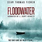Floodwater | Sean Thomas Fisher