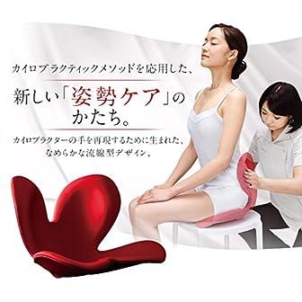 MTG(エムティージー) Body Make Seat Style(ボディメイクシート スタイル) レッド