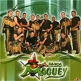 No Puedo Dejarte De Amar - Banda Maguey