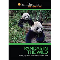Smithsonian Channel: Pandas in the Wild